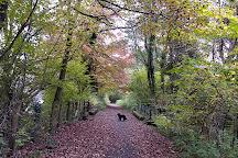 Dare Valley Country Park, Aberdare, United Kingdom