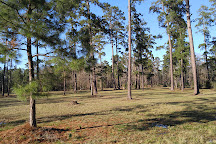 W. G. Jones State Forest, Conroe, United States