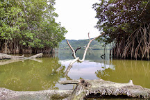 Laguna de Manialtepec, Puerto Escondido, Mexico