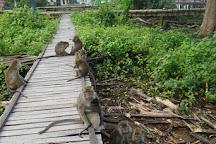 Kembang Island, Banjarmasin, Indonesia
