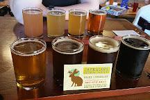 Jackalope Brewing Company - The Den, Nashville, United States