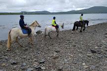Valentia Island Pony Trekking, Valentia Island, Ireland