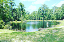 Lee State Park, Bishopville, United States