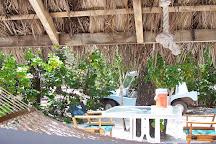 Petit St. Vincent, St. Vincent and the Grenadines