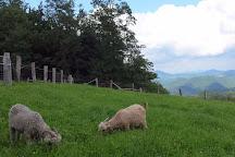 Apple Hill Farm, Banner Elk, United States