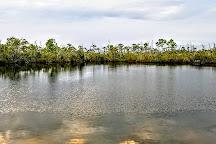 Blue Hole, Big Pine Key, United States