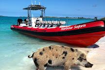 Harbour Safaris, Nassau, Bahamas