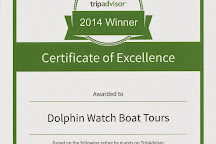 Dolphin Watch Boat Tours, Fort Pierce, United States