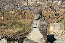 Seihaku-ji Temple, Yamanashi, Japan