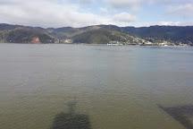 Bahia de Corral, Valdivia, Chile