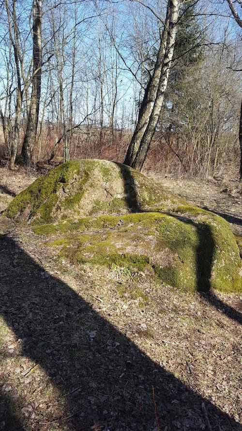 Laukagalio akmuo