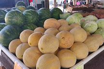 Airport Farmers & Flea Market, Brooksville, United States