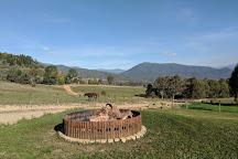 Bogong Horseback Adventures, Tawonga, Australia