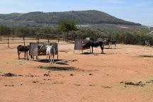 El Refugio del Burrito, Fuente de Piedra, Spain