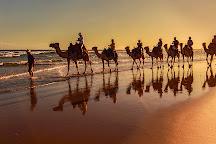 Oakfield Ranch, Anna Bay, Australia