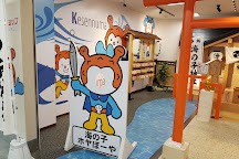Rias Shark Museum, Kesennuma, Japan