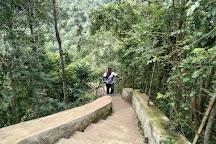 Kiliyur Falls, Yercaud, India