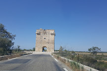 Tour Carbonniere, Aigues-Mortes, France