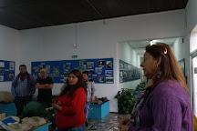Museo de Geociencias, Tacuarembo, Uruguay