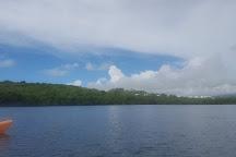 Laguna Grande, Puerto Rico