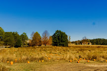 Porter's Orchard, Goodrich, United States