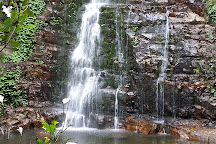 Minnamurra Rainforest Centre, Jamberoo, Australia
