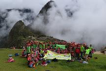 Alpaca Expeditions, Cusco, Peru