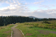 Beacon Fell Country Park, Goosnargh, United Kingdom