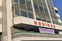 Korean Department Store in Pyongyang, Pyongyang, North Korea