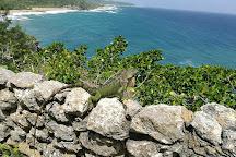 El Merendero de Guajataca, Quebradillas, Puerto Rico