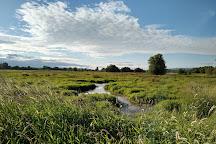Ridgefield National Wildlife Refuge, Ridgefield, United States
