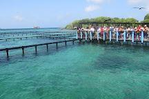 Oceanario, Islas de Rosario, Colombia