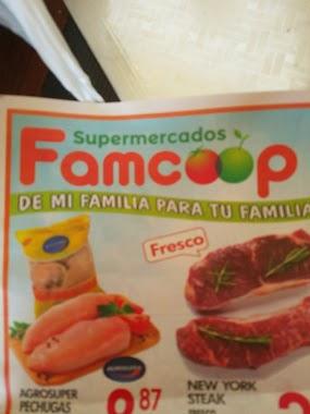 Famcoop, Author: Maribel Vazquez