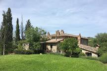 Monte Bernardi, Panzano in Chianti, Italy