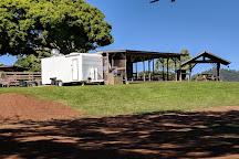 Adventure Maui Road to Hana Tour, Hana, United States