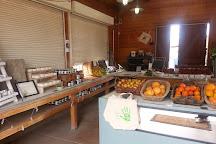 McGrath Family Farm, Camarillo, United States