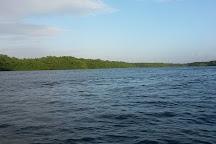 Caroni Swamp, St. Ann's, Trinidad and Tobago