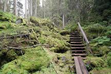 Orinoro Gorge, Leppavirta, Finland