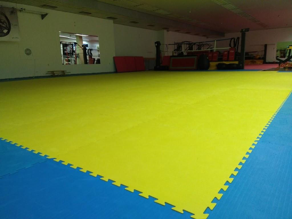 7643f456f MMA EXTREME Gym, Poprad — Ludvíka Svobodu