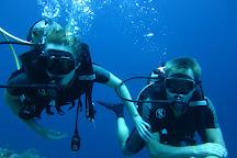 La Bella Dive Pemuteran, Pemuteran, Indonesia