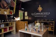 La Consorteria 1966, Modena, Italy