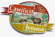 Caseificio Jemma, Battipaglia, Italy
