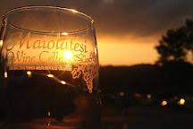 Maiolatesi Wine Cellars, Scott Township, United States