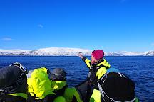 Arctic Adventure Tours, Tromso, Norway