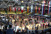 Frankfurt Eissporthalle, Frankfurt, Germany