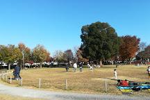 Maehara Park, Komae, Japan