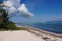 Beach Bubbles Cayman, Grand Cayman, Cayman Islands