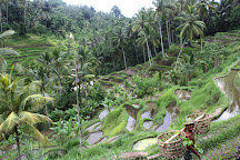 Authentik Bali - Day Tours, Ubud, Indonesia