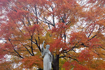 Swan Point Cemetery, Providence, United States