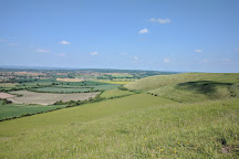 Roundway Down Iron Age Hill Fort, Devizes, United Kingdom